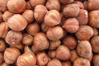 Filberts (Hazelnuts), Raw 16 oz.