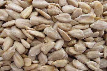 Sunflower Seeds, Raw 16 oz