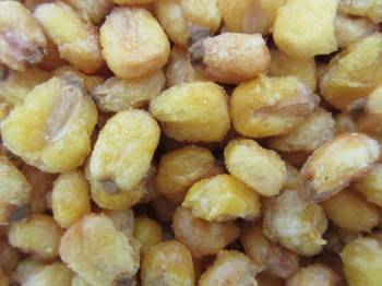 Corn Nuts 6 oz.