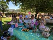 Birthday Parties, Picnics & Family Reunions Cover