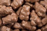 Snacks & Other Treats - Chocolate Cinnamon Bears 8 oz.