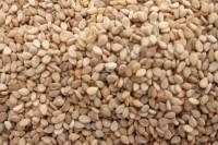 Nuts - Seeds - Sesame Seeds 8 oz.