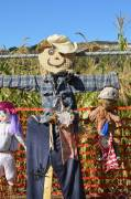 2013 Scarecrow Contest Cover